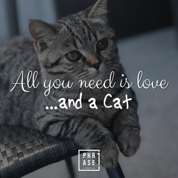 All you need is love …and a ... | Emaille Becher