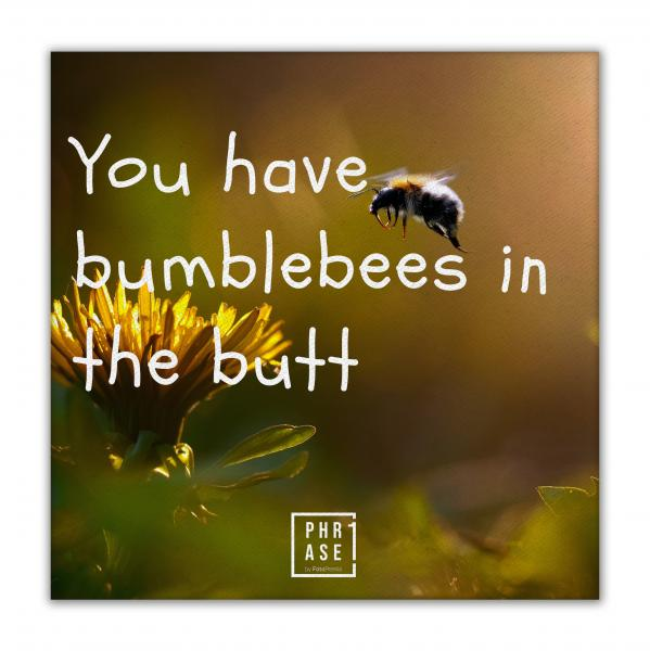 You have bumblebees in the ... | Leinwand