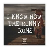 I know how the bunny runs | Leinwand
